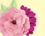 Blommor och kärlek
